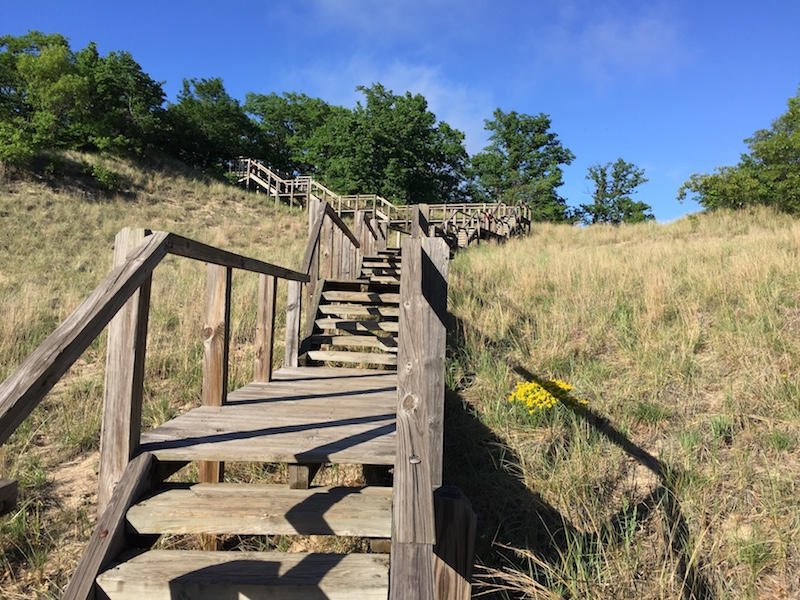 Staircase up the dune on Trail #4