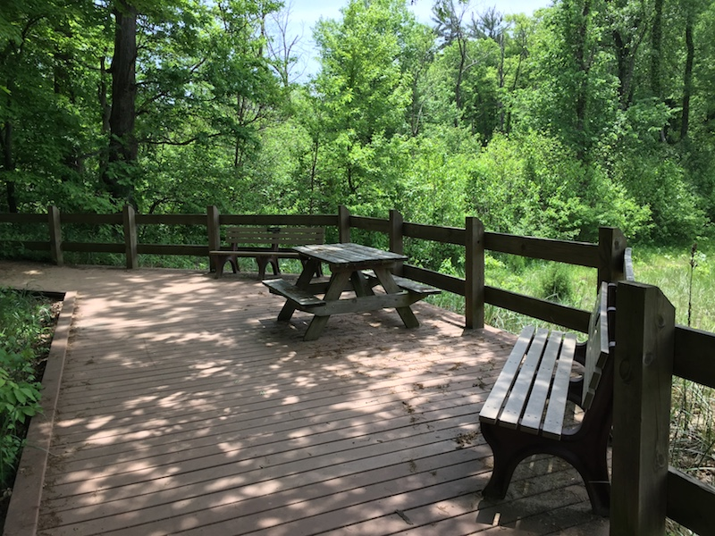 Shady picnic spot on the Beach Trail boardwalk, Indiana Dunes State Park