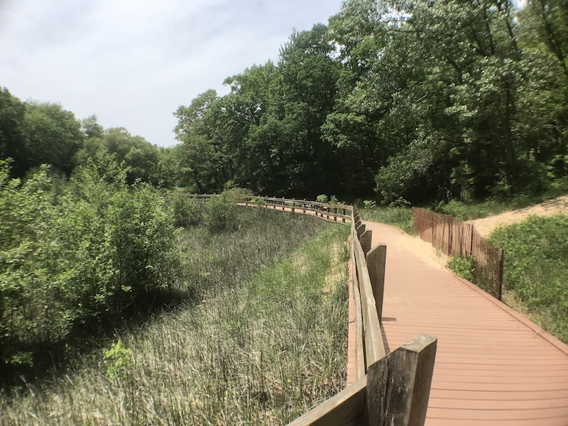 Boardwalk to the swimming beach on the Beach Trail, Indiana Dunes State Park