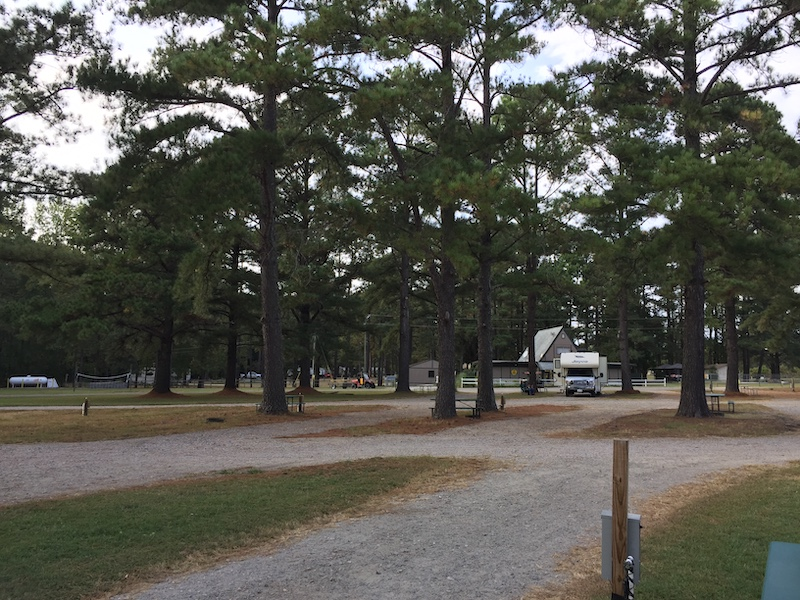The view from site #11 back toward the check-in/office at Enfield/Rocky Mount KOA